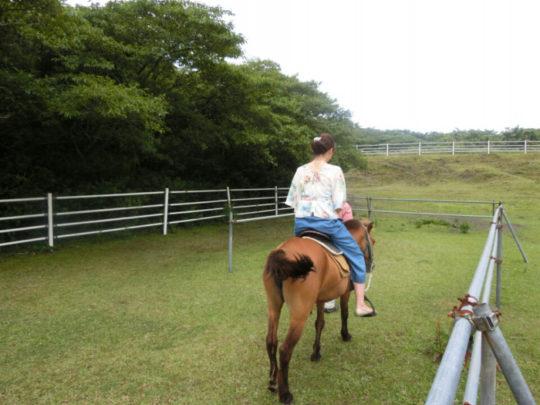 伊豆大島で乗馬