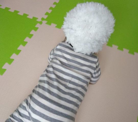 なりきり編み小物
