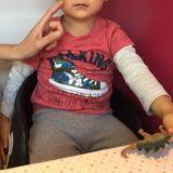 2歳児の歯磨きイヤイヤ対策法